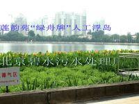 北京碧水污水处理厂